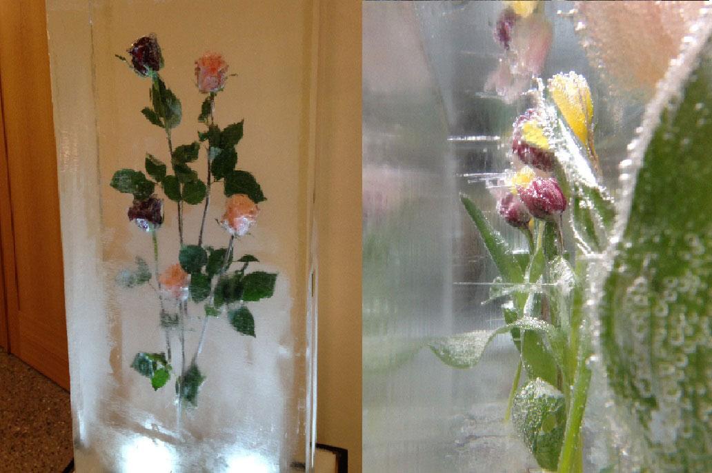 Blumenzwiebel im Eis als Skulptur mit Knospen